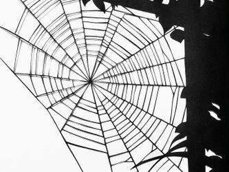額装済み切り絵作品・蜘蛛の糸の画像