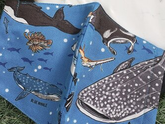秋冬マスク 立体マスク キッズ オトナ ジンベエザメ 魚 サメの画像