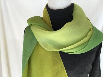 草木染め シルクオーガンジーストール 緑 グラデーションの画像