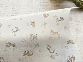 透ける模様紙【SHIBA(ホワイト)】の画像