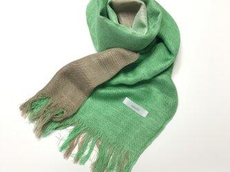 国産シルク100%手描き染めストール 緑&銀煤竹の画像