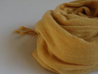 手織りカシミアストール・・銀杏の画像