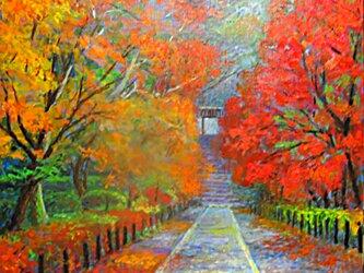 晩秋の画像