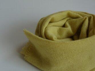 「Nさまご依頼品」手織りカシミアマフラー・・レモンイエローの画像