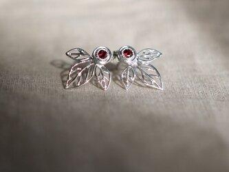 Leaf earrings ☆ ロードライトガーネットのリーフピアスの画像
