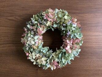 atelierBLUGRA八ヶ岳〜秋の紫陽花Wreath03の画像