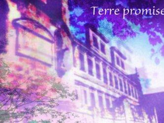 ポストカード*テールプロミーズ TP-13(写真作品2枚セット)の画像