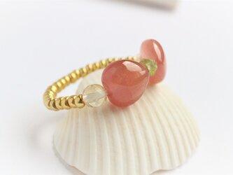インカローズ リボン Ringの画像