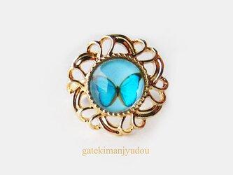 青い蝶の指輪の画像