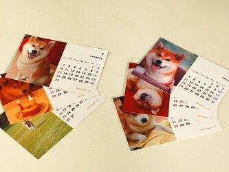 カレンダー2021(柴犬)の画像