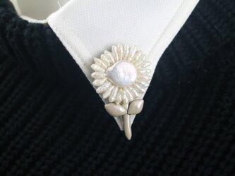 真珠の小向日葵の画像