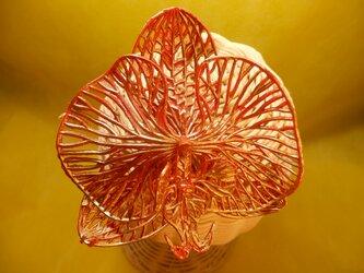 メタルカラー 華やか赤&金 胡蝶蘭の簪 ヘッドドレス 和装ヘア の画像