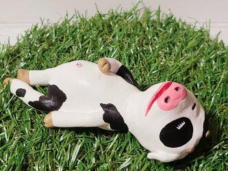 よく寝る牛さんの画像