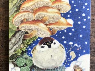 「雪の夜のスズメ」15x15cm パネル作品の画像