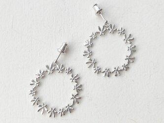 セリ科の花のピアスCの画像