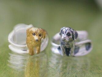 茶垂耳犬のイヤーカフの画像