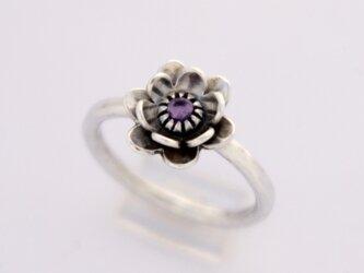 紫花 リングの画像