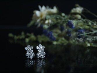 Silver earring 「Anniversary」の画像