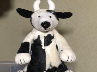 牛シロクマの画像