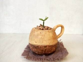 5366.bud 粘土の鉢植え マグカップの画像