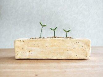 5372.bud 粘土の鉢植え プランターの画像