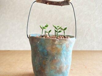 5376.bud 粘土の鉢植え バケツの画像