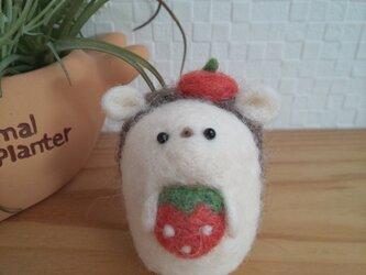 イチゴ大好き つぶらな瞳の臆病なハリネズミさん 羊毛フェルトの画像