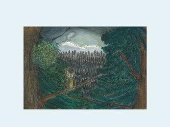 [A¥480] ポストカード 3枚set :027番 「満月の夜、浅間山とフクロウ」の画像