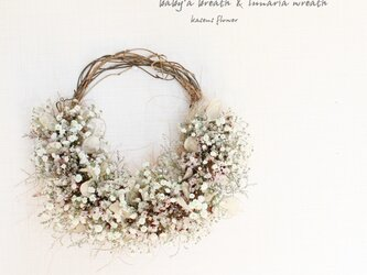 *受注製作*「花筵」half wreath    かすみ草とルナリアのハーフリース 桜  ドライフラワーリース の画像