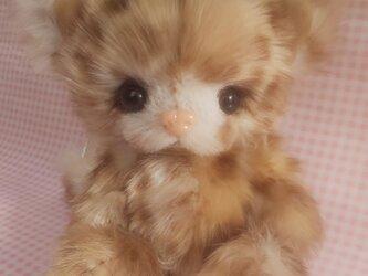 ふわふわぬいぐるみ☆子猫☆Baby cat*の画像