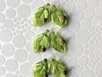 てんとう虫の箸置き・中(2個セット)の画像