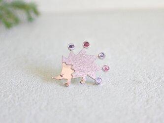 hedgehog -colorful-の画像
