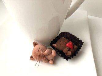 <再販>チョコレートみたいな猫さんコンビ 受注制作の画像