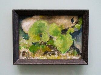 葉っぱさんシリーズ(ふきの葉)原画の画像