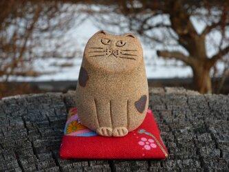 まめ猫 にゃん 4の画像