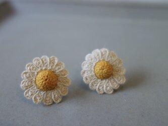 chamomile flower / エクリュの画像