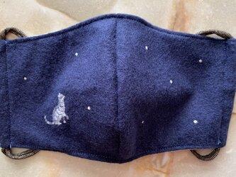 マスク 雪とサバトラ猫の画像