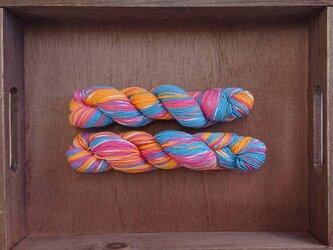 インダスからの贈り物【オリジナル段染め糸】(372) 1本の画像