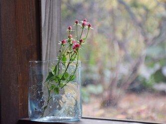 konoha花瓶のみずいろの画像