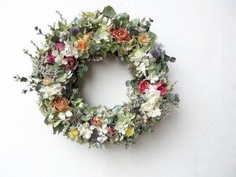 花、花、花、の画像