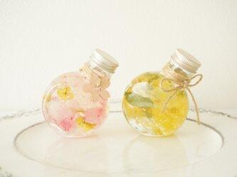 お家時間で楽しむ桜orミモザのハーバリウム〜ハンドメイドキット〜の画像