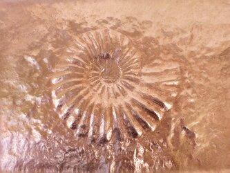 額付き銅板レリーフ プロテキサニテス1の画像