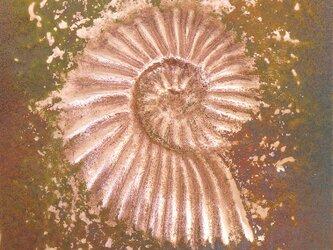 額付き銅板レリーフ アナゴードリセラス1の画像