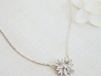 イングリッシュ・デイジーネックレスA (silver)の画像