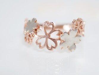 Sakura Blossom *〜桜のリング〜* (silver×pink gold)の画像