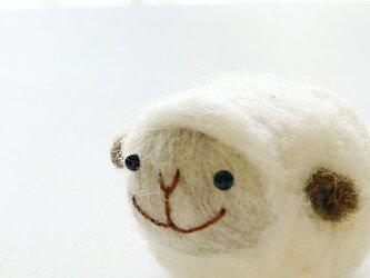 old lambkinの画像