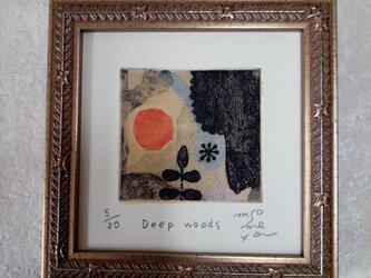 銅版画 『Deep woos』の画像