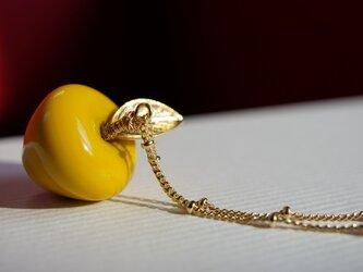 林檎ーmustard yellowーの画像