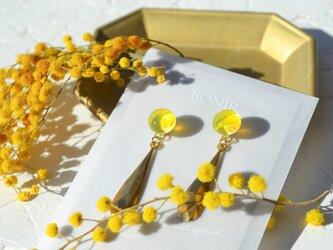 mimosa+mの画像