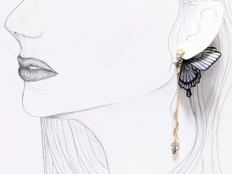 【ダークシリーズ】蝶のピアス(アゲハ) グレーの画像